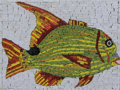 AN1234 Cool Colorful Fish Pool Bathroom  Mosaic