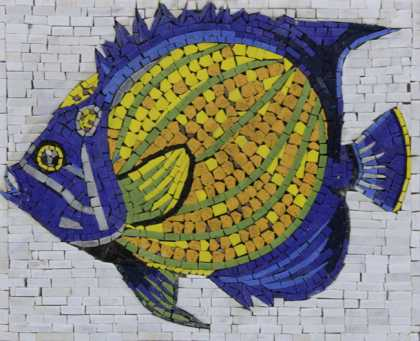 AN1236 Cool Funky Colorful Fish Pool Bathroom  Mosaic