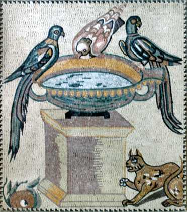 AN169 Birds drinking for water jar