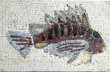 AN21 Fish with big fins mosaic