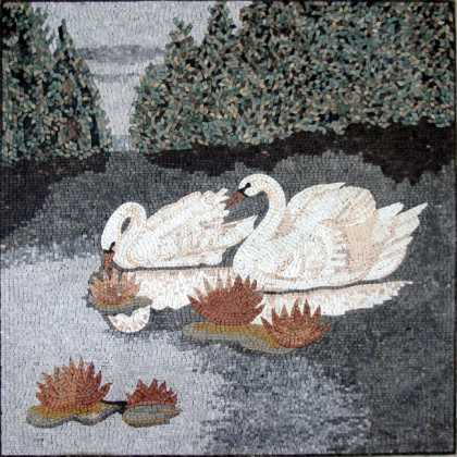 AN242 White swans on lake Mosaic