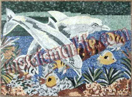 AN439 Beautiful dolphins & fish colorful Mosaic