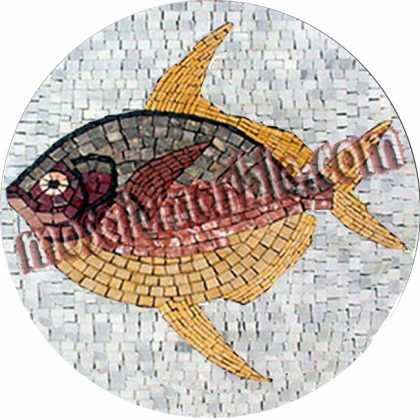 AN495 Big colorful fish Mosaic