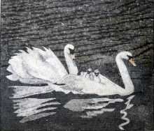AN50 White swan family Mosaic