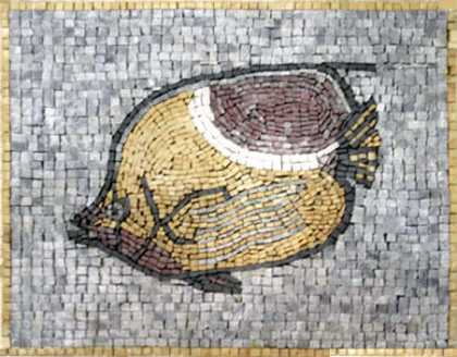 AN67 Big fish Mosaic