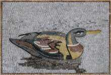 AN860 Duck Lake Double Border Home Marble Mosaic