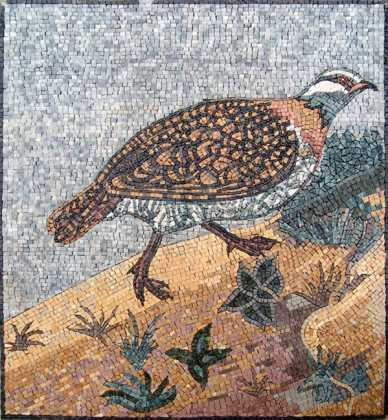 AN98 bird walking on sand Mosaic