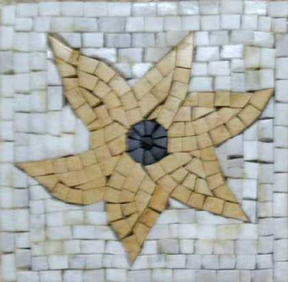 IN234 Mosaic