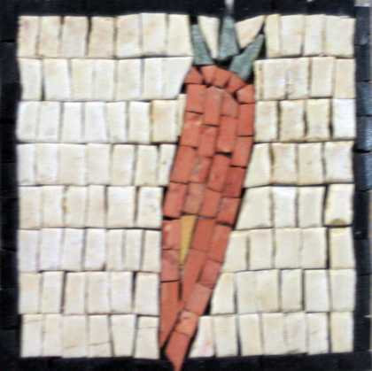Large Orange Carrot Kitchen Backsplash Mosaic