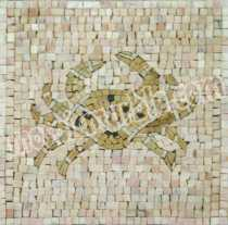 IN309 Mosaic