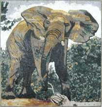 Elephant in Nature Square Mosaic
